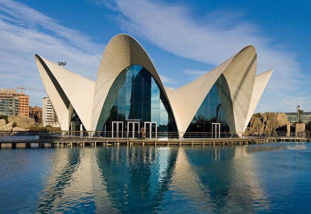 1200px-L'Oceanografic,_Valencia,_Spain_1_-_Jan_07